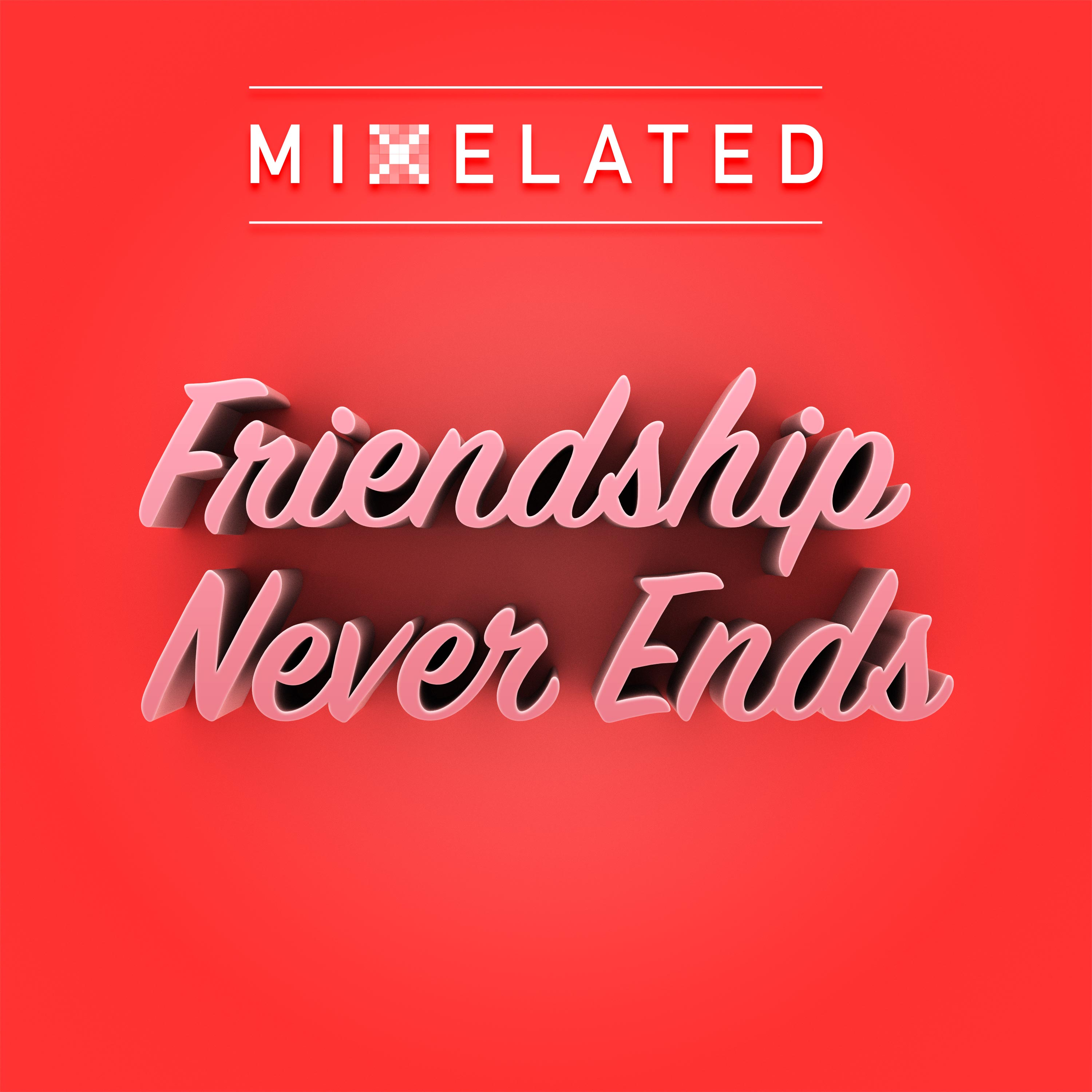 Albumart Friendship Never Ends